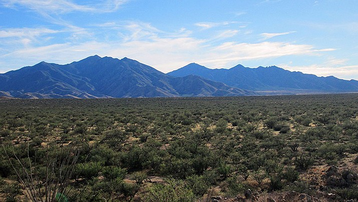 Copper deposits found in the Santa Rita Mountains near Tucson are sufficient enough to conduct open-pit mining, a Canadian mining company has determined. (Photo by $1LENCED00800D, cc-by-sa-3.0, https://bit.ly/3dnG8md