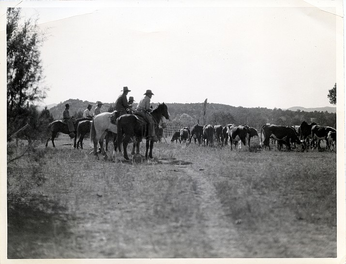 The roundup, ca. 1900. Call # 1075.0138.0004. (Sharlot Hall Museum Research Center./Courtesy)