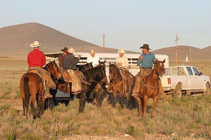 Babbitt Ranches cowboys gather around a horse trailer prior to starting their work for the day. In April, Babbitt Ranches celebrates 135 years of ranching in northern Arizona. (Photo/Jim Jennings, AQHA)