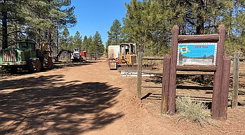 Forest thinning near old Route 66 alignment in Parks raises concern photo