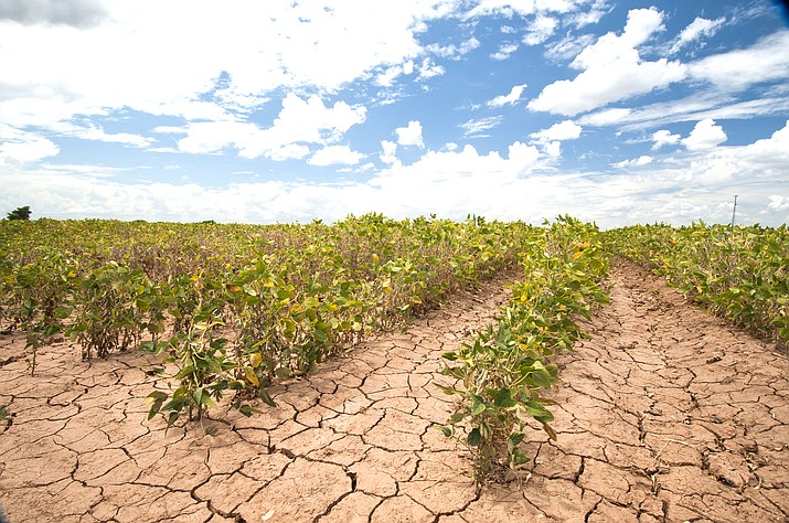 Government officials said May 25 that Western states, including Arizona, remain locked in the grip of a historically severe drought, with the past year being one of the driest in more than a century. (Photo by Bob Nichols/U.S. Department of Agriculture).