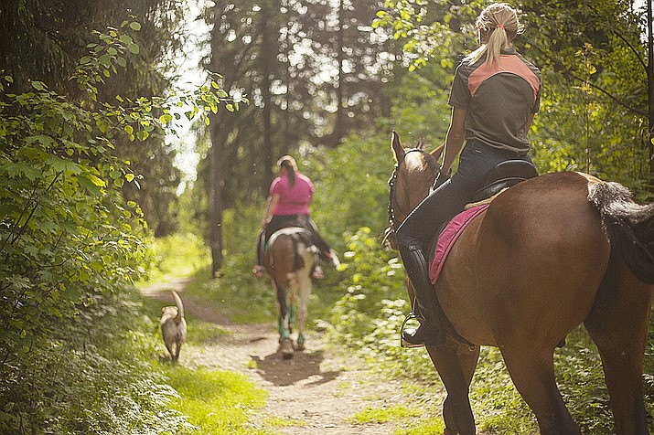 The Yavapai Trails Association was awarded $17,500 in funding to help complete a maintenance project on the Almosta Trail System to not only benefit hikers, but equestrians as well. (Courier stock photo)