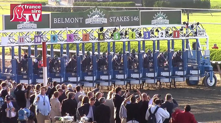 Essential Quality is the favorite for the Belmont Stakes on Saturday, June 5. (Photo by FranceSireTV, cc-by-sa-3.0, https://bit.ly/3g9kGme)