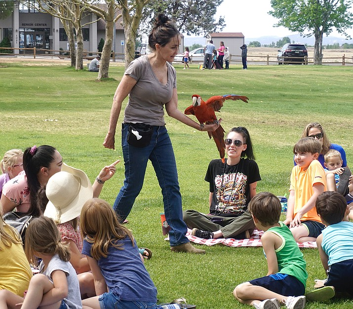 """Sacred Scarlets owner Kelley Taylor walks through the audience to display her macaw named """"Sedona Rose"""" during an event as part of the Chino Valley Library's Reading Program on Wednesday, June 2, 2021, at Memory Park. (Aaron Valdez/Review)"""