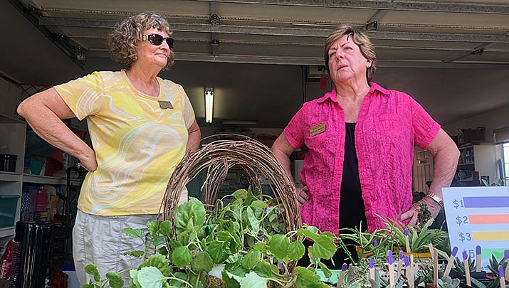 The Cerbat Garden Club will hold its annual plant sale on Friday, June 11. (Miner file photo)