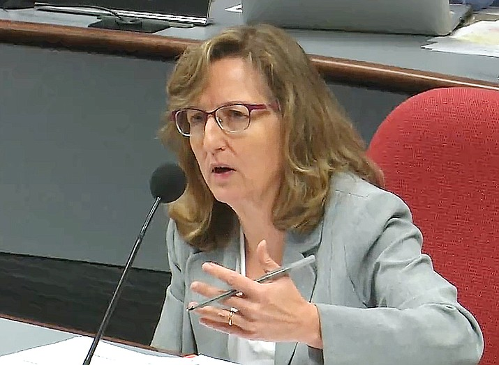 Sen. Kirsten Engel questions David Tenney, the state forester, about how his agency will spend $100 million that would be allocated to fight fires and prevent future ones. (Capitol Media Services screen shot)