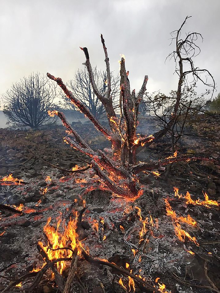 The Prescott National Forest and a variety of fire teams, including two hotshot crews, have been fighting as many as eight fires that resulted from lightning since Thursday, June 17, 2021. (Courtesy)