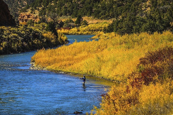 In this Oct. 14, 2020, file photo, a fisherman tries his luck in the Colorado River near Burns, Colo. Drought-induced low water flows, critically high water temperatures and sediment runoff from wildfire burn scars that starve trout of oxygen prompted Colorado wildlife officials on Wednesday, July 7, 2021, to impose a voluntary fishing ban along a 120-mile stretch of the Colorado River. (Chris Dillmann/Vail Daily via AP)