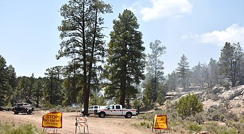Grand Canyon fire fighters manage small wildfire photo