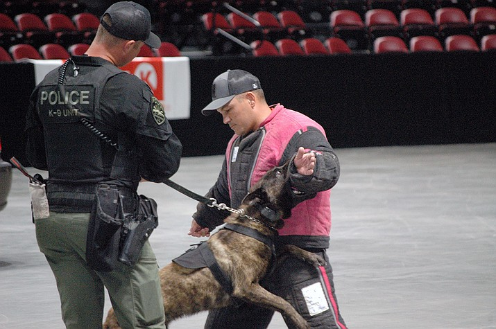 K-9 handlers from at least 15 different law enforcement agencies across Arizona visited Findlay Toyota Center in Prescott Valley to publicly demonstrate K-9 team scenarios for an hour and a half on Tuesday night, July 20, 2021. (Doug Cook/Courier)