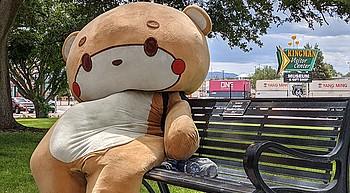 'Bearsun' walks through Kingman for a cause photo
