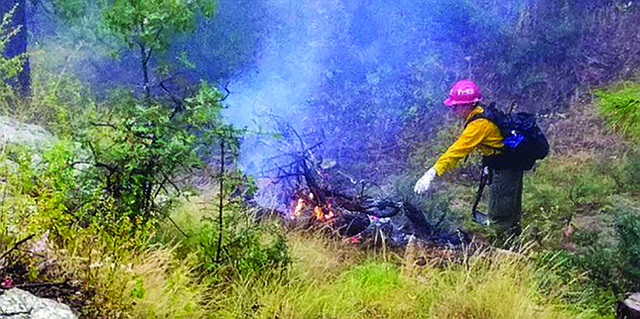 In this undated photo, a firefighter is seen burning debris piles. (Prescott National Forest/Courtesy)