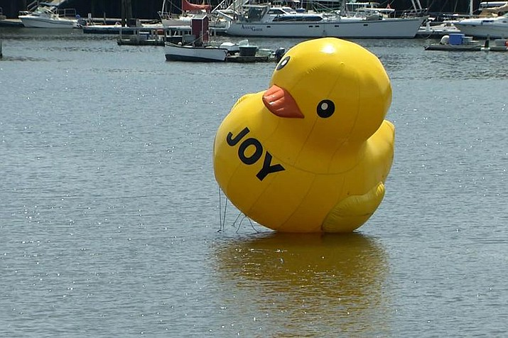 A giant rubber ducky floats in Belfast Harbor, Tuesday, Aug, 17, 2021, in Belfast, Maine. Harbor Master Katherine Given says it's a mystery who put it there, but that the 25-foot-tall duck doesn't pose a navigational hazard so there's no rush to shoo it away. (New England Cable News/Kenn Tompkins via AP)