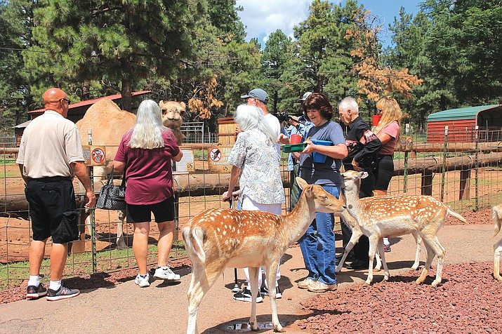 The original owner of Grand Canyon Deer Farm, Marge Hamilton, visited current owners Pat and Randy George at the farm Aug. 20. (Wendy Howell/WGCN)