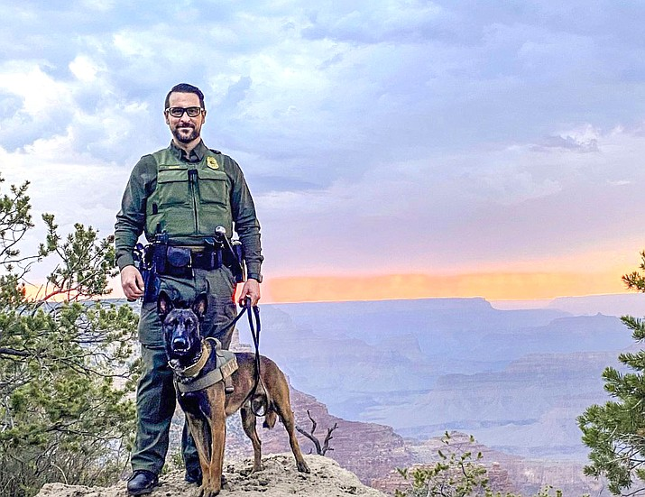 Mazi is a dual-purpose K9 certified in patrol functions and narcotics detection at Grand Canyon National Park. (NPS Photo, A. Rehkopf)