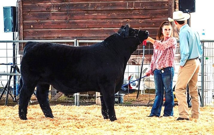 Julia Dyer won Grand Champion Arizona Breed and Feed. (Submitted photo)