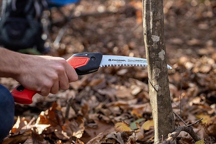 A seven-inch RazorTooth folding saw is perfect for removing small or medium sized dead or diseased branches from shrubs and small trees in the fall. (Melinda Myers, LLC/Courtesy)