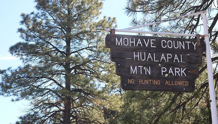 The Mohave County Parks Department hopes to purchase an off-highway vehicle to be used for education and enforcement on trails in Hualapai Mountain Park. (File photo)