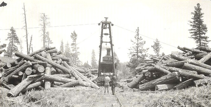 A steam skidder working on timber, cutting of which is being supervised by Forest Service by Roy Headley in July 1924. (Photo courtesy of Kaibab National Forest)