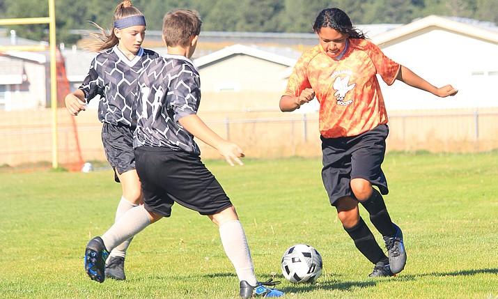 Falcon Kailee Davis works around a defender. (Photo/WEMS)