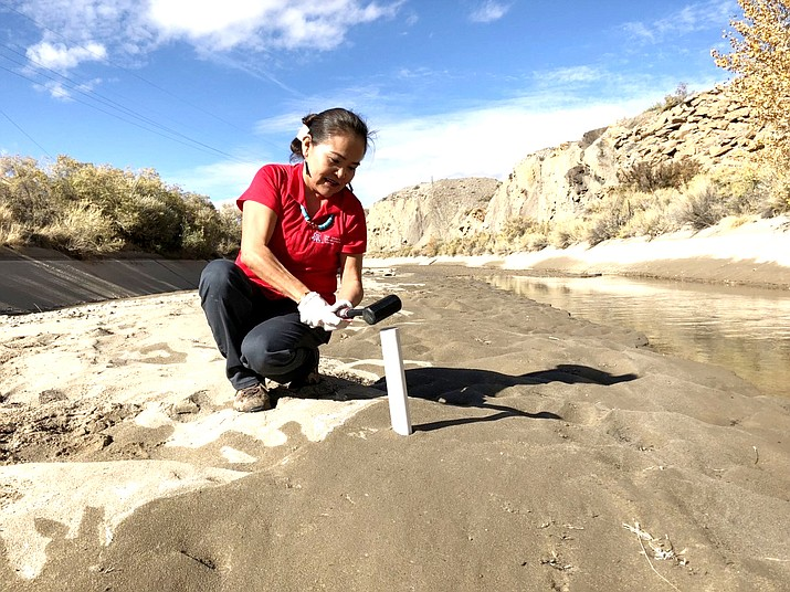 Karletta Chief, an associate professor at University of Arizona, pounds a soil sample tube into the Hogback irrigation canal near Waterflow, New Mexico, on the Navajo Nation in 2017. Soil sampling is done to measure arsenic and lead in the sediment to better understand the impact of the Gold King Mine Spill of 2015 on the Navajo Nation. (Photo courtesy of Karletta Chief via UofA)