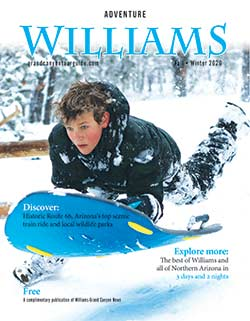 Williams Tour Guide Cover